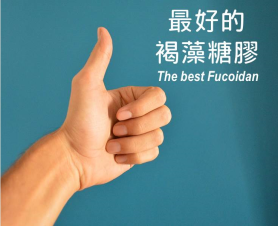 the best fucoidan