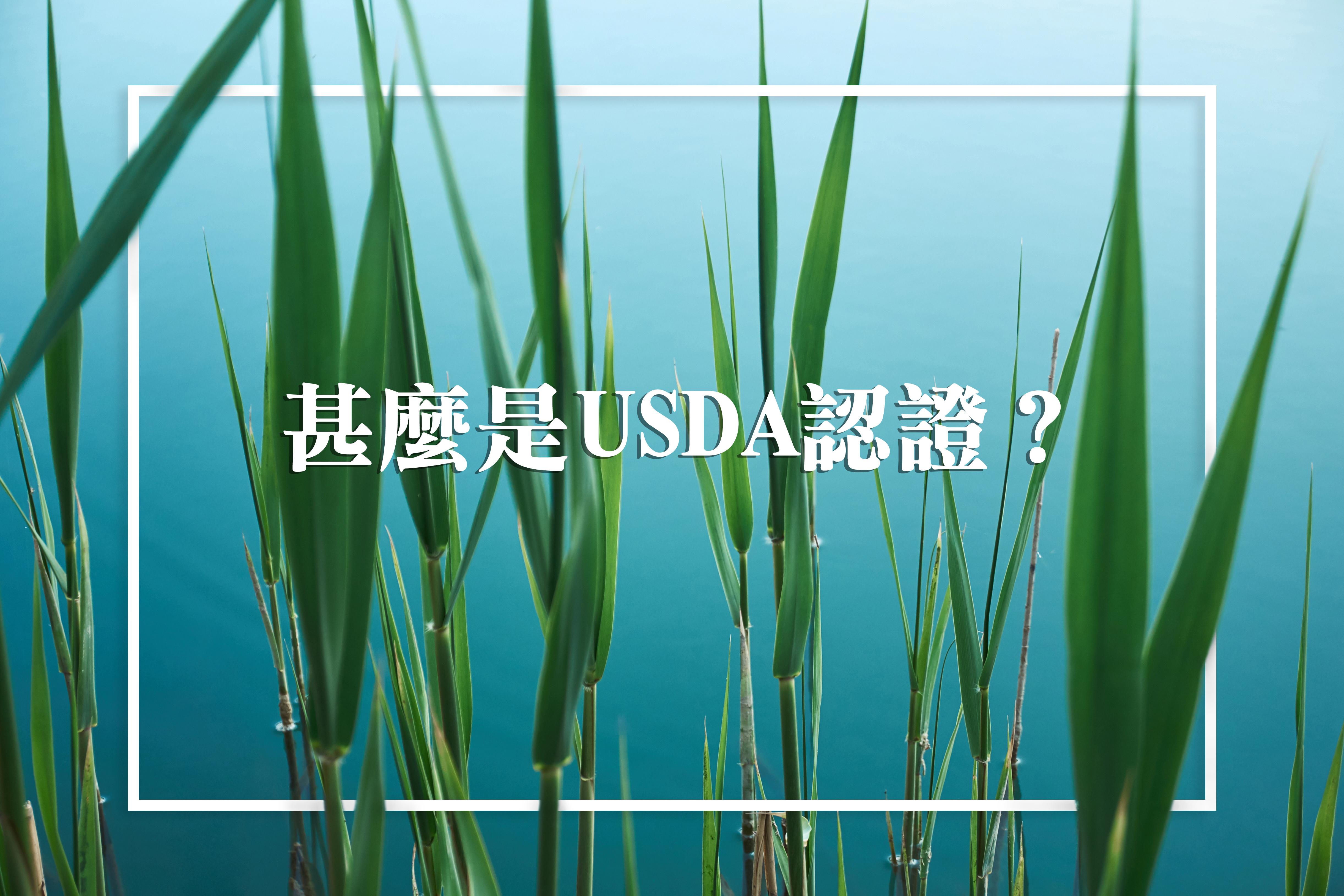 Organic-03.jpg