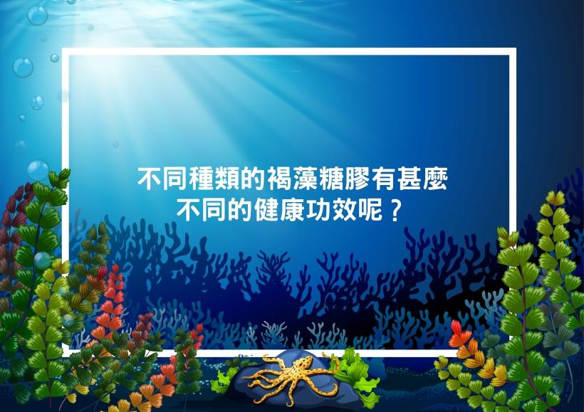 Seaweed and health_05.jpg